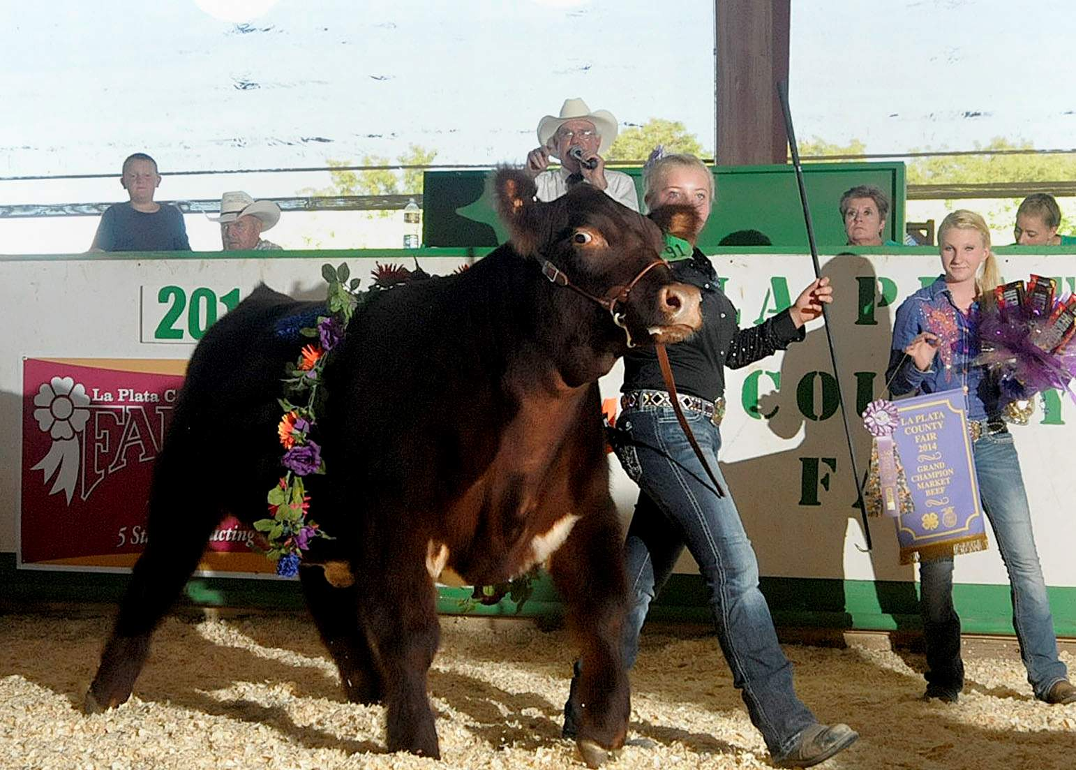 Jaw breaker named grand champion market beef steer keely harper 15 of bayfield and the ignacio westerneers 4 h club leads jaw breaker around the auction arena saturday evening after he won grand champion thecheapjerseys Choice Image