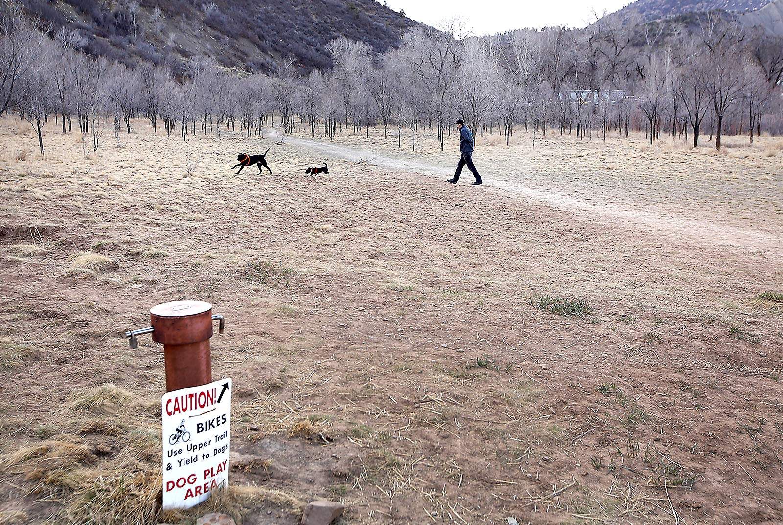 Homeless Residents May Be Allowed To Sleep Near Dog Park