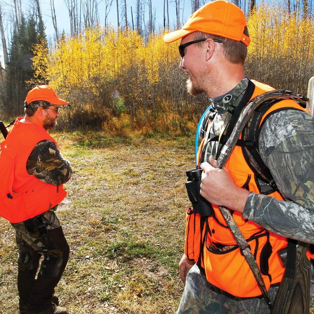 Colo  wildlife officials to nation's elk hunters: Hunt here!