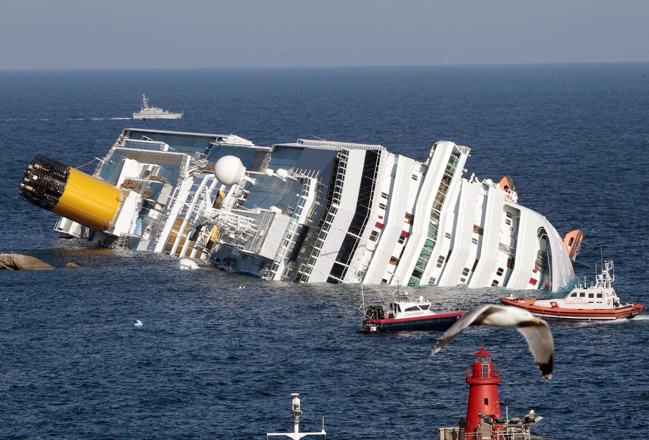 Chaos Fear Rules After Cruise Ship Runs Aground