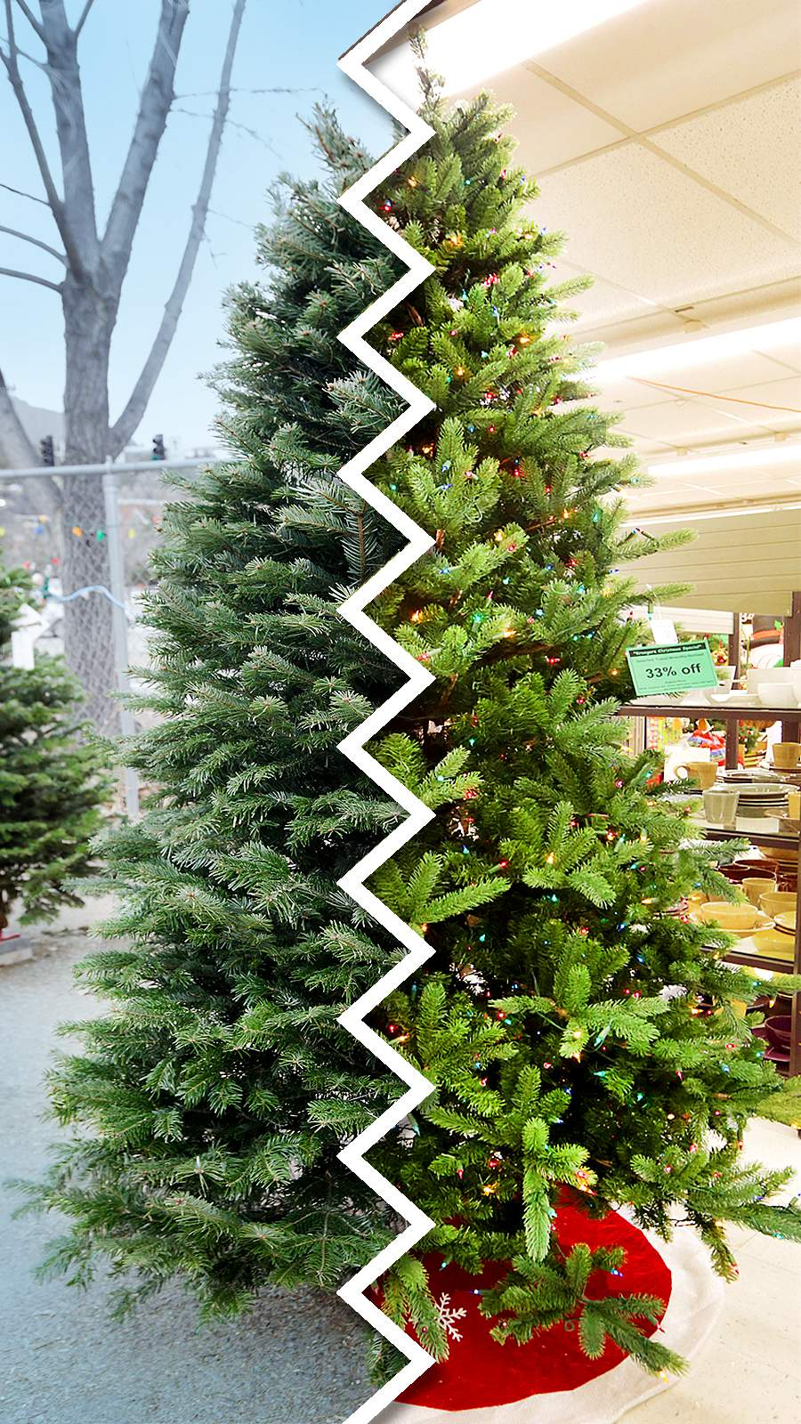 When it comes to Christmas trees, is real or fake the better ...