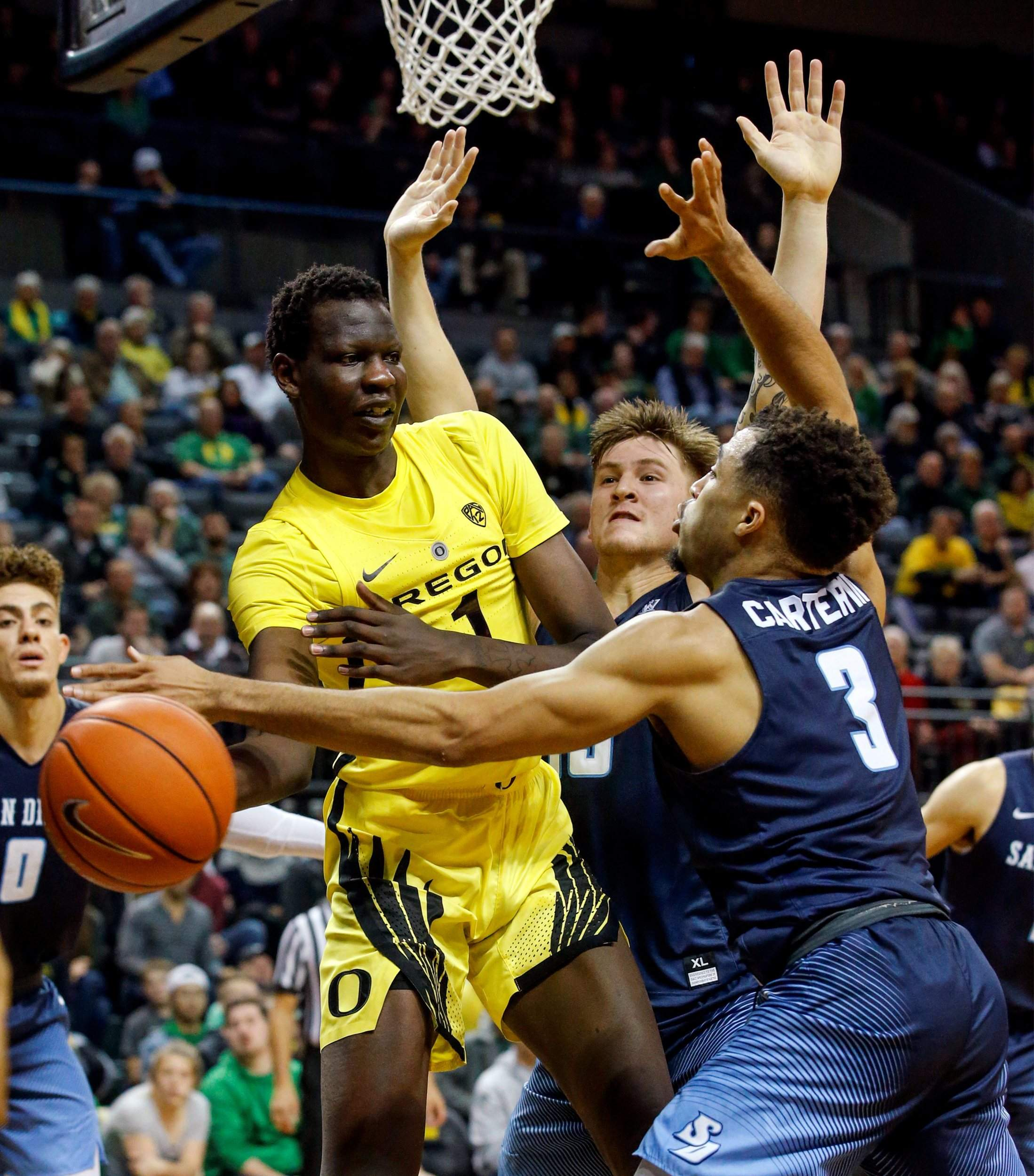 Denver Nuggets Pick Up Bol Bol From Heat After He Drops