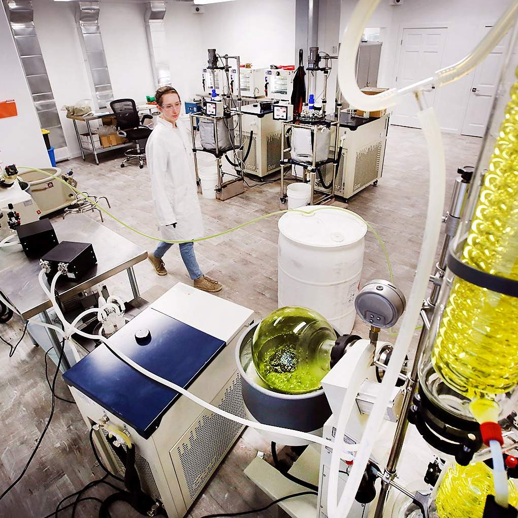 Home-grown CBD oil company grows as national market explodes